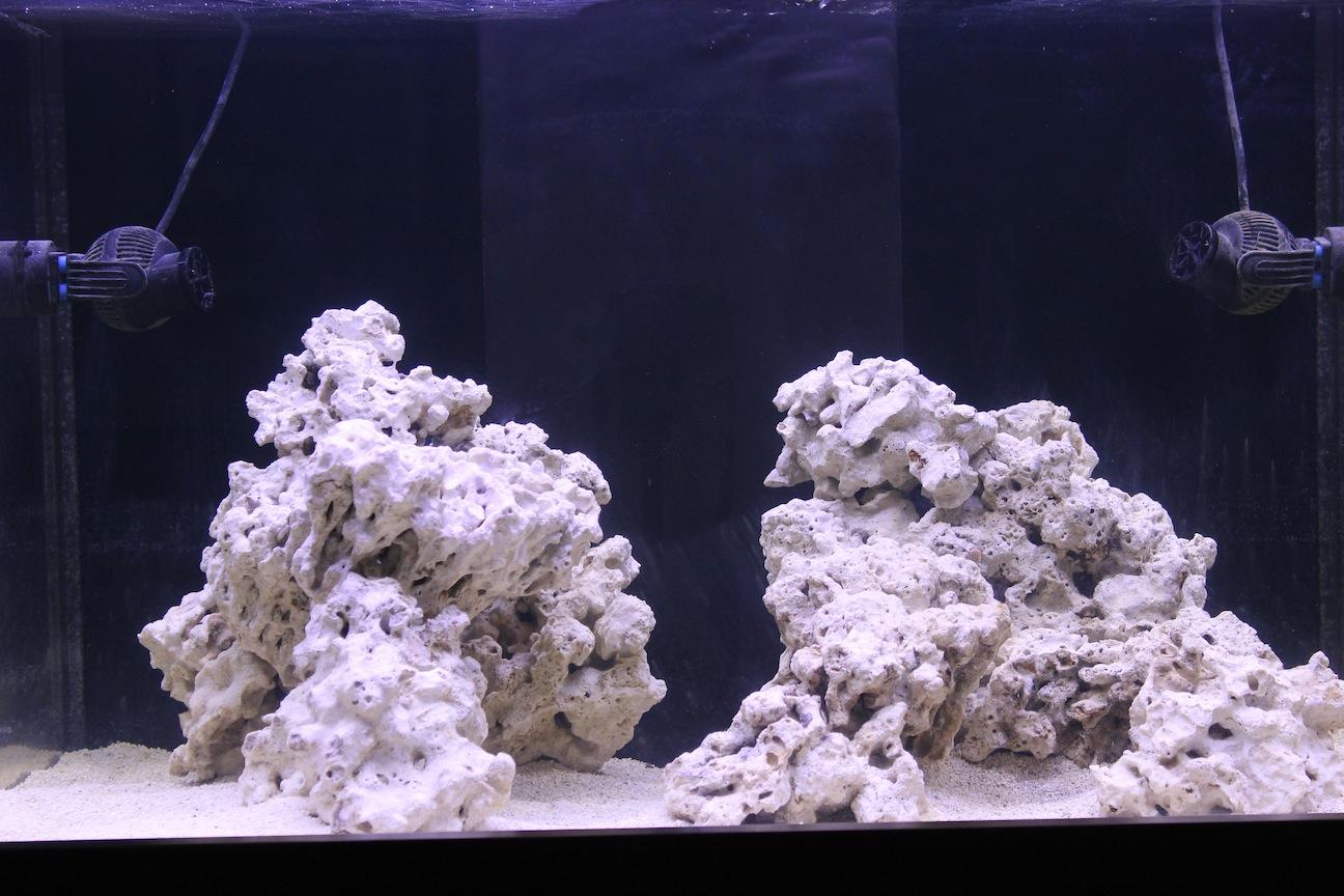 Aquarium Under Current USA TrueLumen Pro LED