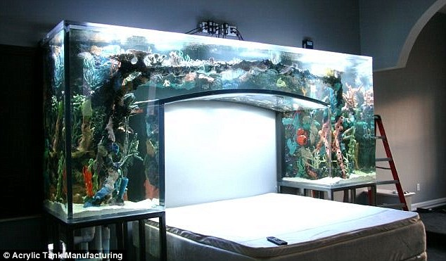 Chad Ochocinco Bedroom Aquarium