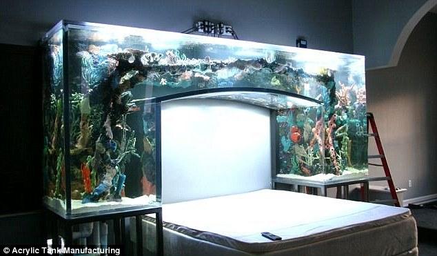 Chad Ochocinco Bedroom Aquarium