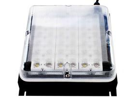 Ecoxotic Panorama LED Retrofit 2D