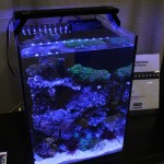 Ecoxotic RGB Panorama Blue