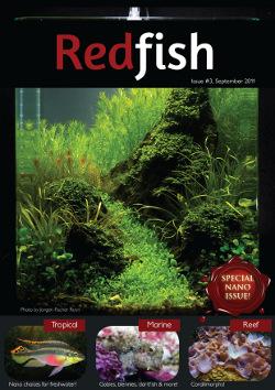 RedFish Magazine Issue 3