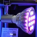 CoralVue RGB PAR38 LED