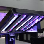 Ecoxotic Panorama LED Fixture