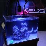 Kessil Deep Ocean Blue 20000K A150W