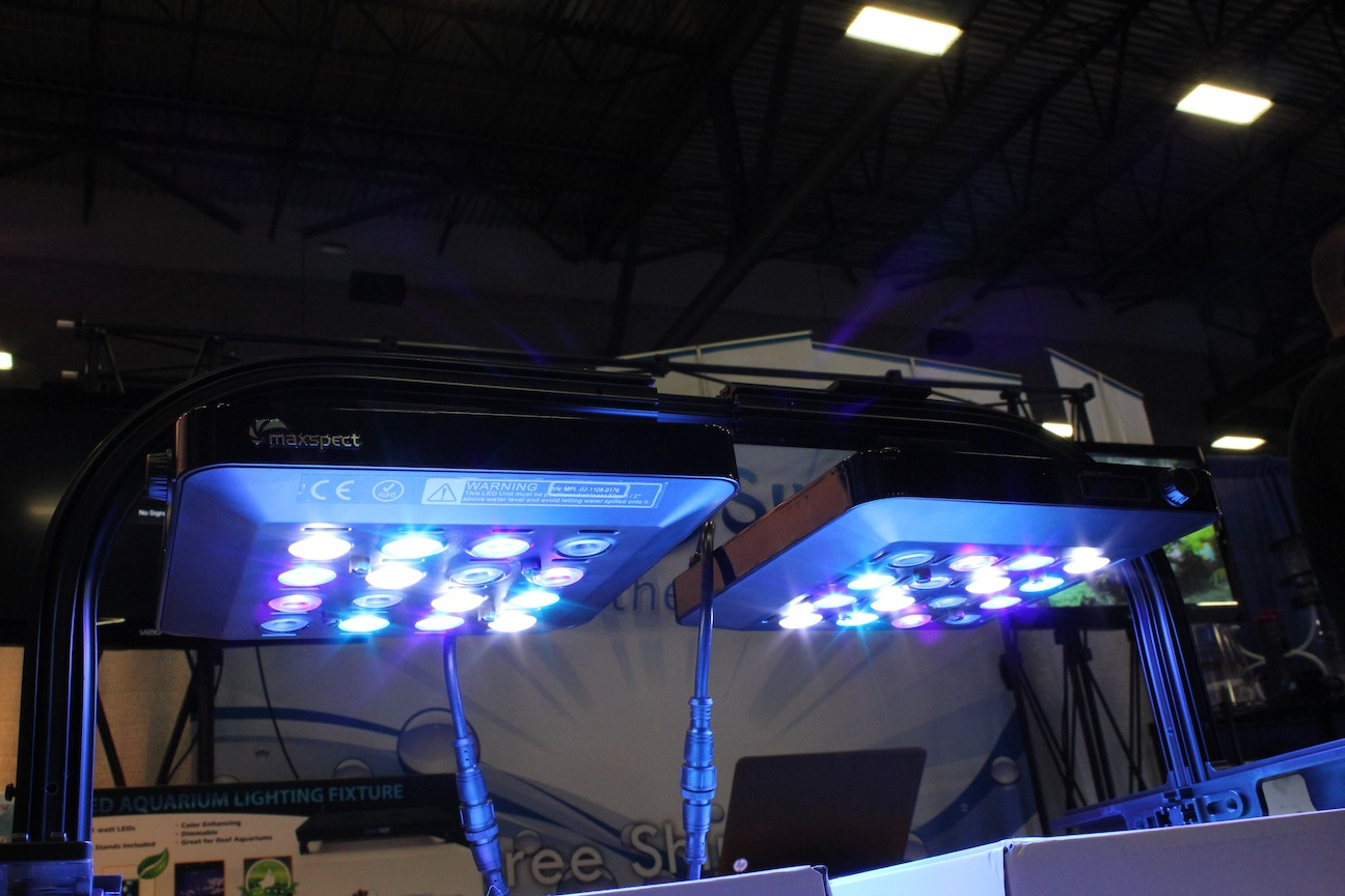 Mazarra LED from Maxspect