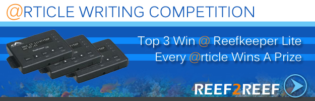 Reef2Reef Article Competition
