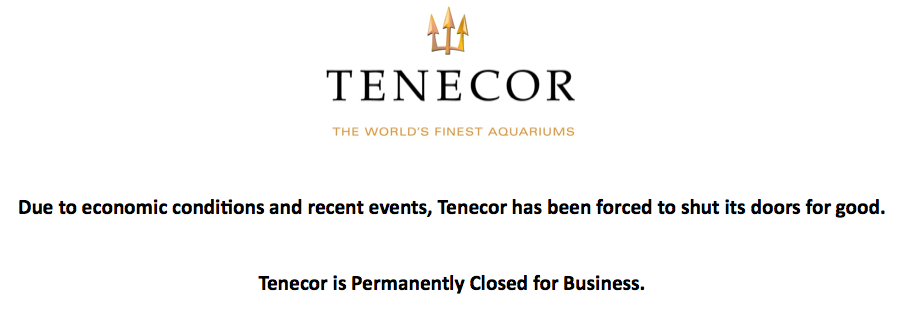 Tenecor Goes Out of Business