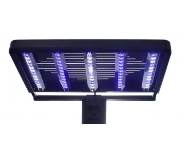 Ecoxotic Panorama Pro LED Fixture