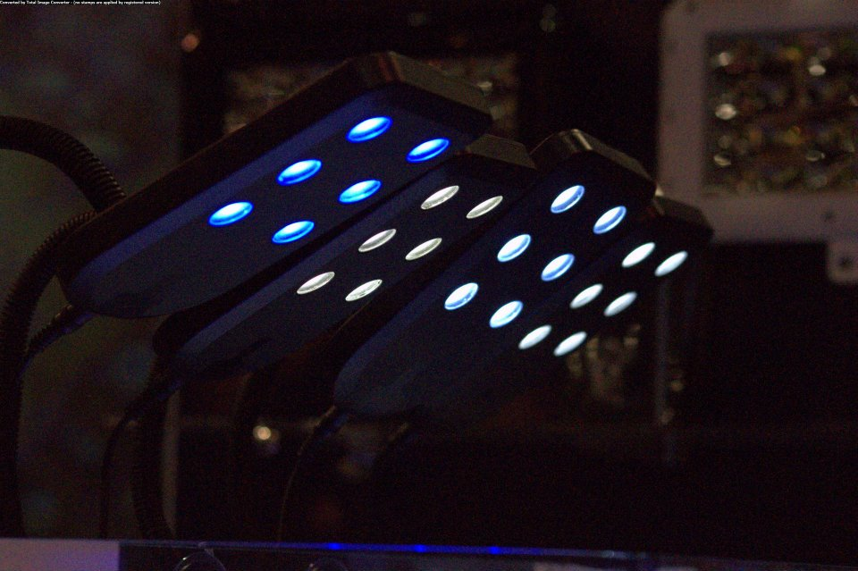 SkkyeLight Utility LED Colors