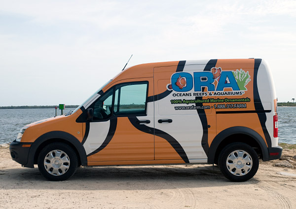ORA Clownfish Van