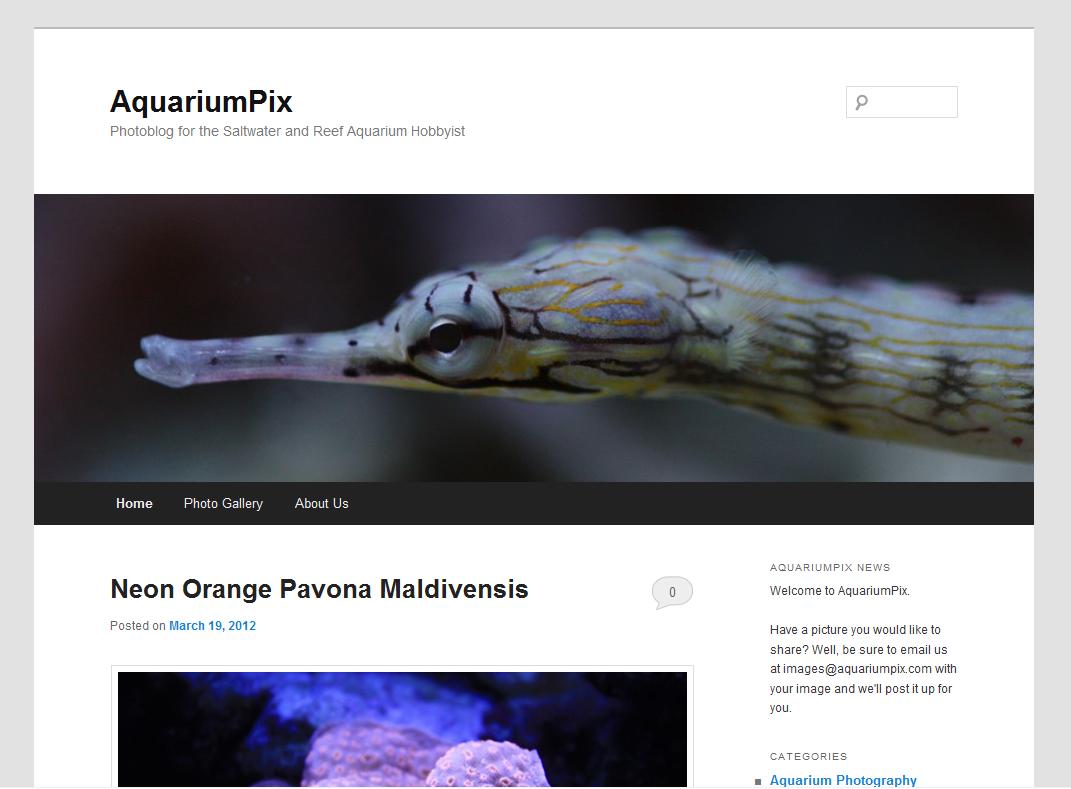 AquariumPix Photoblog