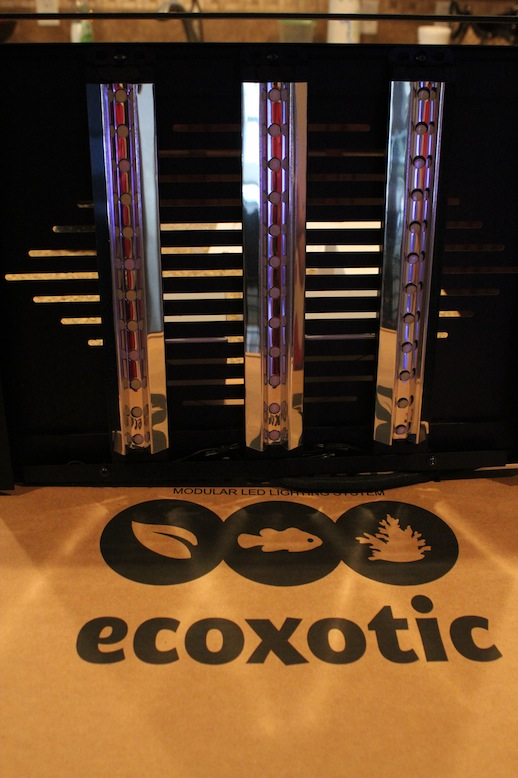 Ecoxotic Panorama Pro Fixture