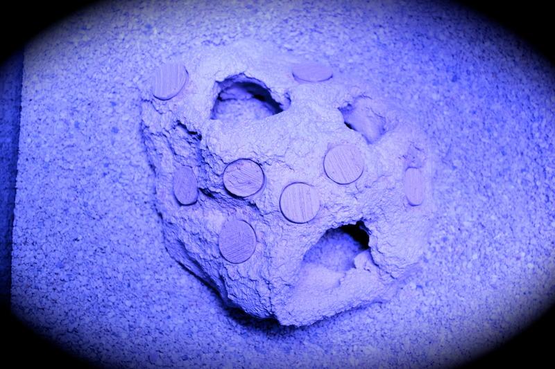 Micro Rock 8