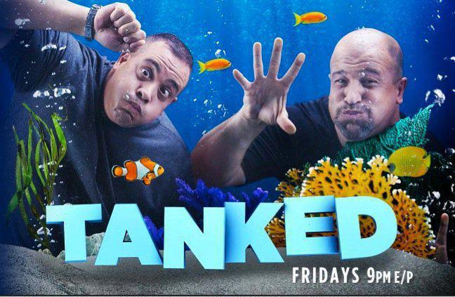 Tanked on Animal Planet