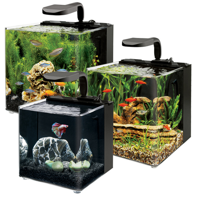 Aqueon 39 s little known evolve line of pico aquariums aquanerd for Aqueon fish tank