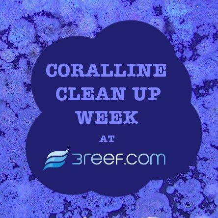 Coralline Cleanup Week
