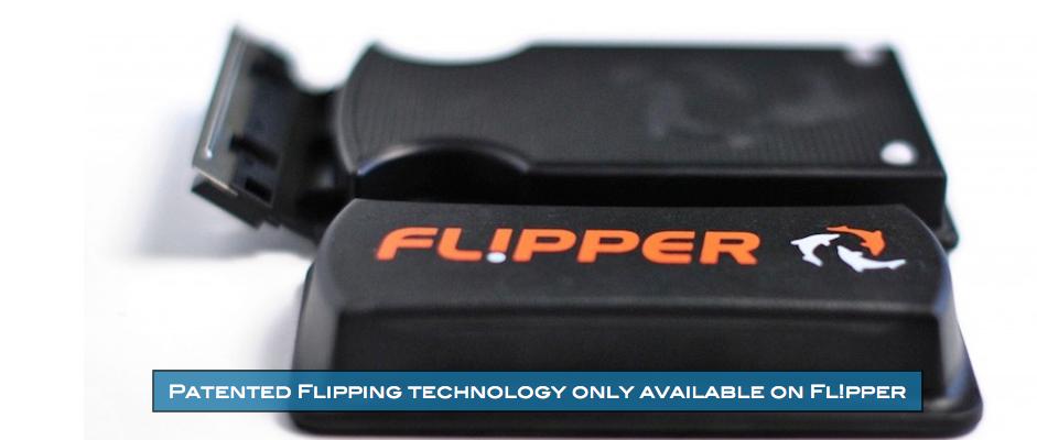 Flipper Aquarium Magnet