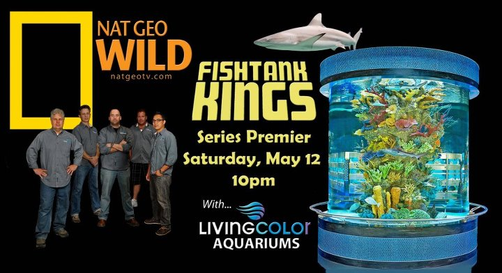 National Geographic Fish Tank Kings