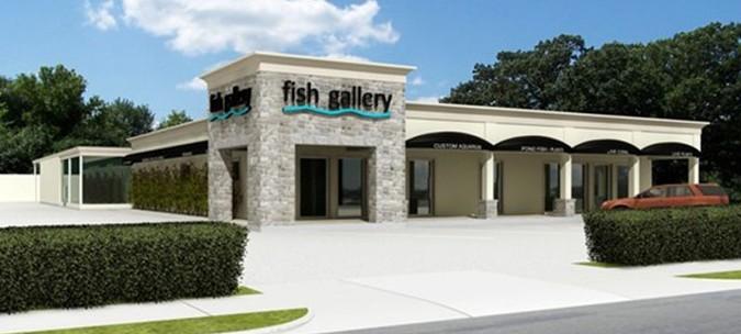 Fish Gallery Houston