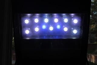 JBJ Cree LEDs