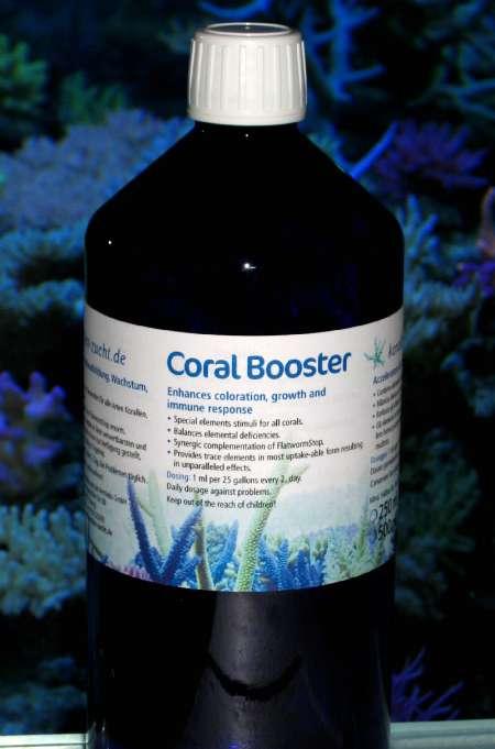 Korallen Zucht Coral Booster