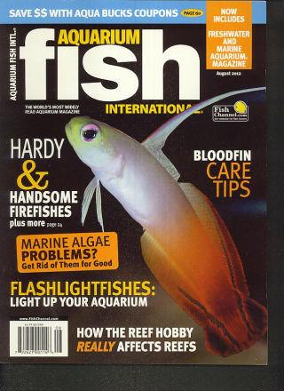 Aquarium Fish International