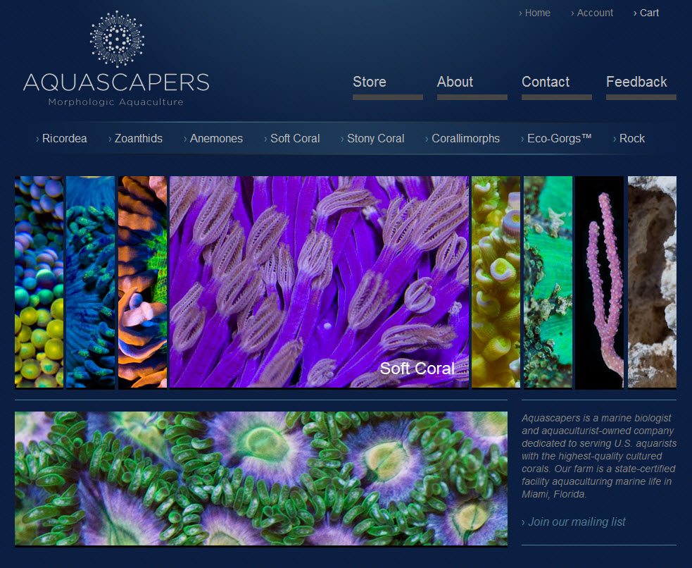Aquascapers by Coral Morphologic