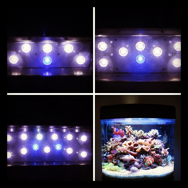 JBJ Nano Cube LED