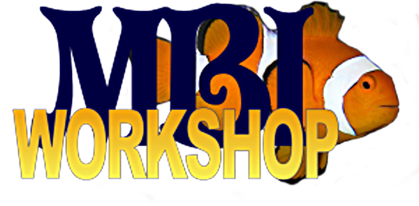 MBI Workshop Logo