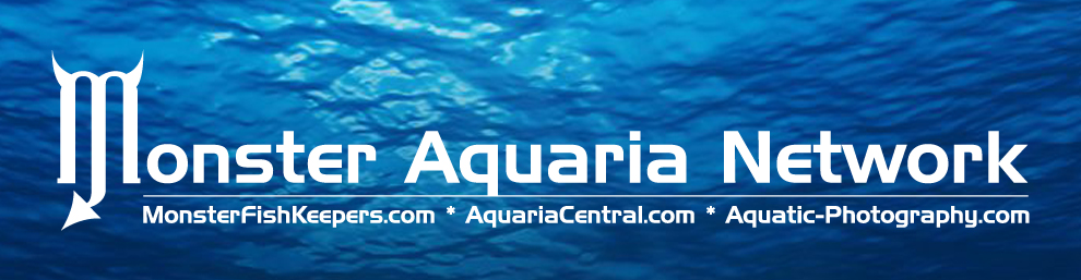 Monster Aquaria Network