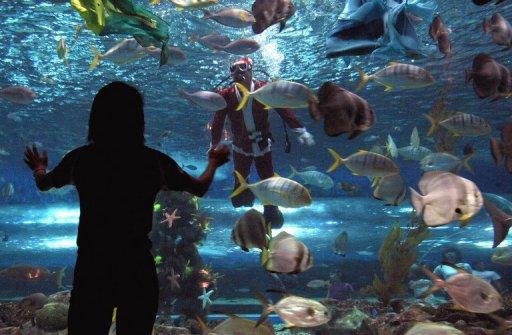 Public Aquarium in Manila