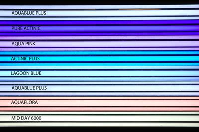 Giesemann T5HO Colors