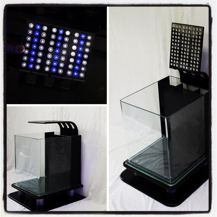 JBJ USA Rimless Nano with Flipper LED