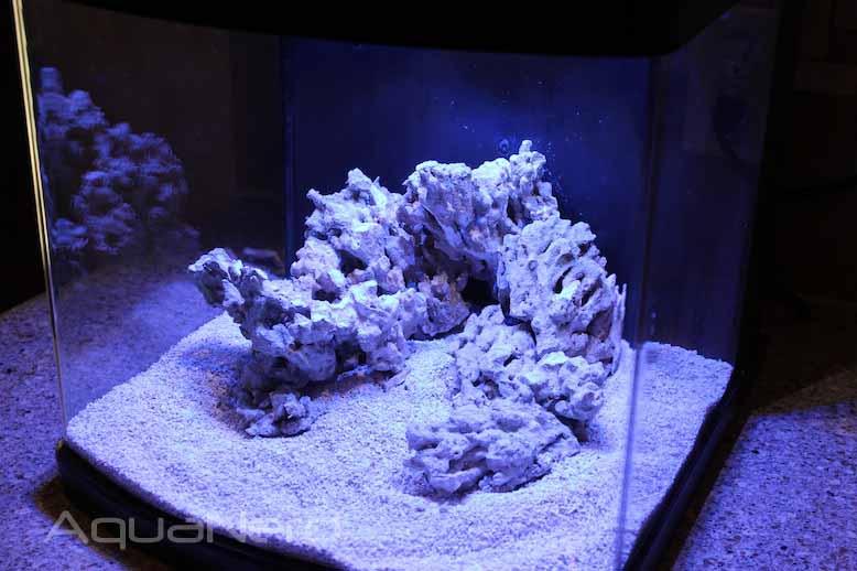 Rock Layout in JBJ LED Nano Cube
