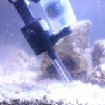 Algae Mower Vac in Tank