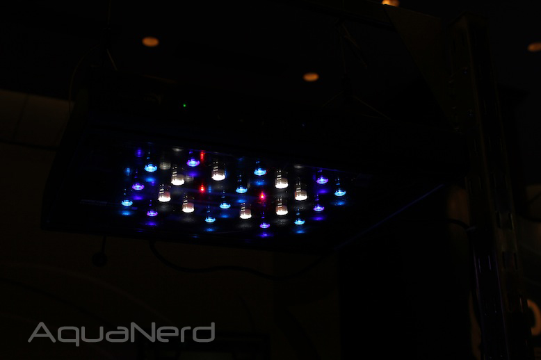 AquaticLife LED 3.0W Marine Colors