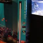 Fluval Marine & Reef Performance LED Strip Light
