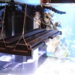Fluval Sea Marine & Reef Performance LED Strip Light