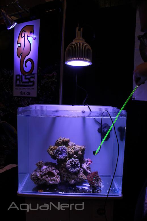 Orphek PR-72 Over Display Reef