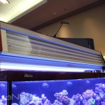 Red Sea Max S 650 T5HO Panel