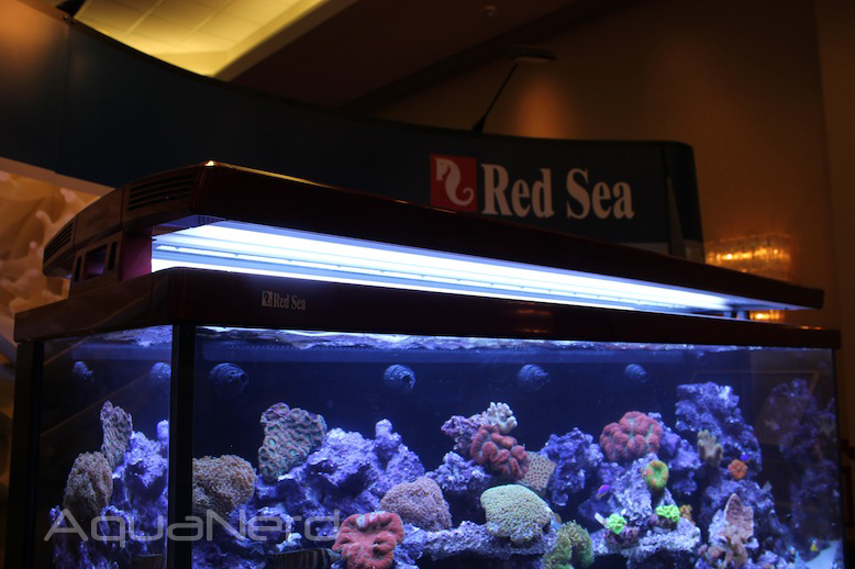 Red Sea Max S650 T5HO