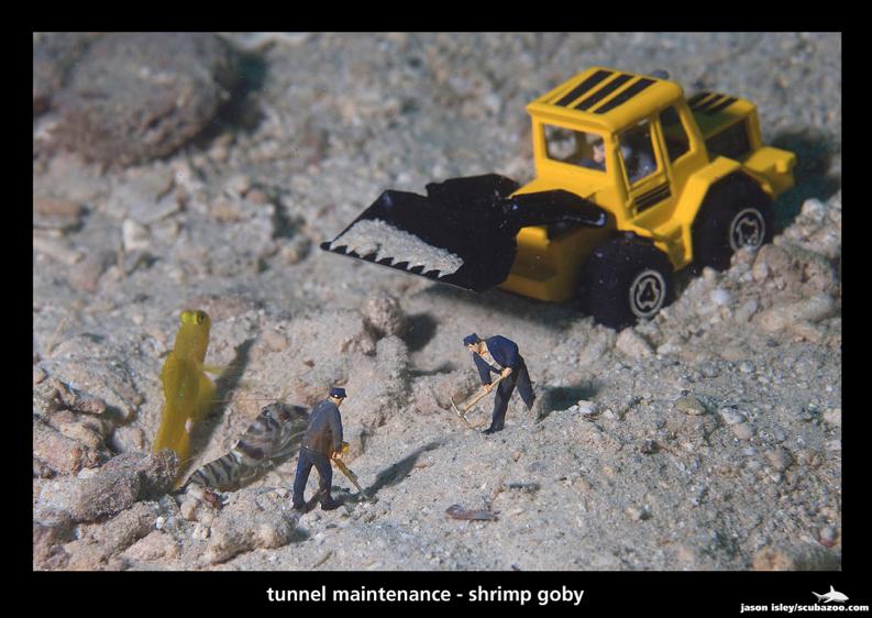 Harmony - Tunnel Maintenance by Jason Isley