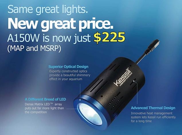 Kessil A150W Price Drop