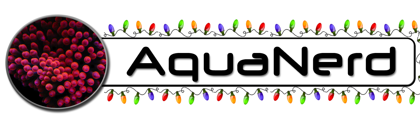AquaNerd Christmas Logo