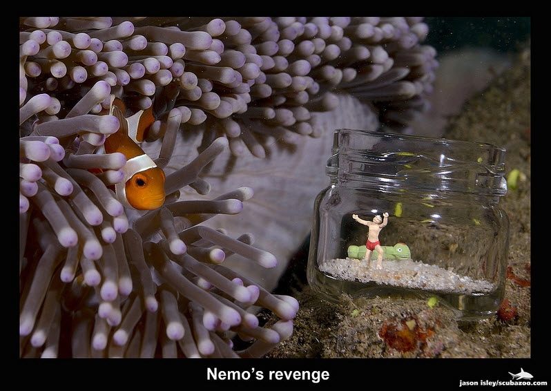 UW Attack - Nemo's Revenge by Jason Isley