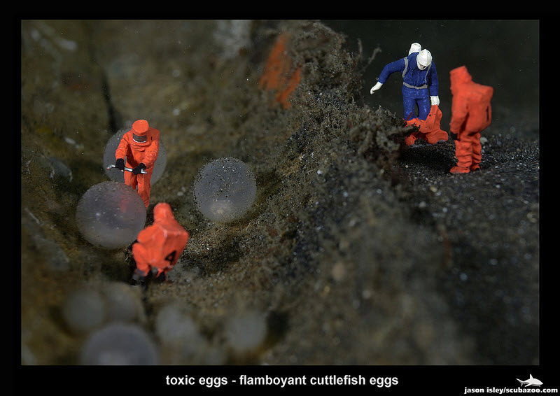 Workers - Toxic Eggs by Jason Isley