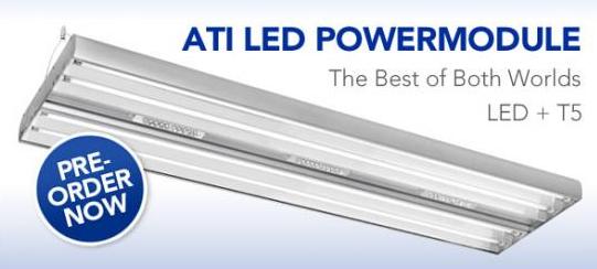 ATI LED Powermodule Pre-order