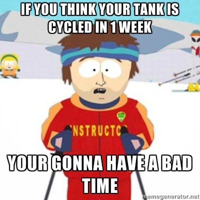 Bad Time Aquarium Cycle