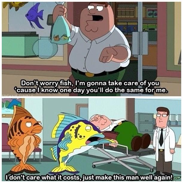 Fish Take Care of Me